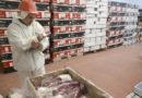 Frigoríficos bonaerenses recibieron el 72% del cupo de exportación de carne a Colombia