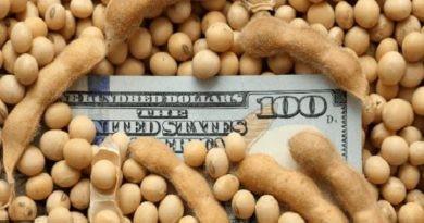 La liquidación de dólares del agro cerró el primer semestre con un máximo en 18 años