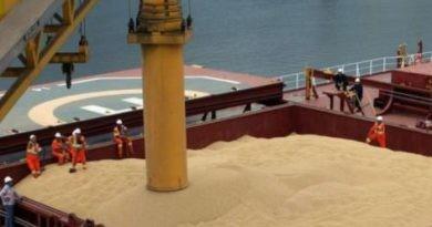 La participación de la harina de soja argentina en el comercio internacional caería a su menor nivel en 20 años