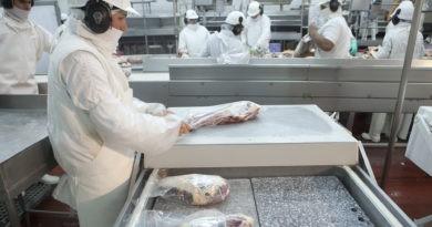 ¿Qué pasó con la carne bovina a partir del cierre de las exportaciones?